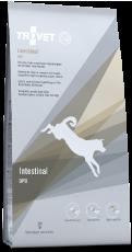DPD Intestinal