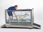 banheira de hidroterapia RS.S